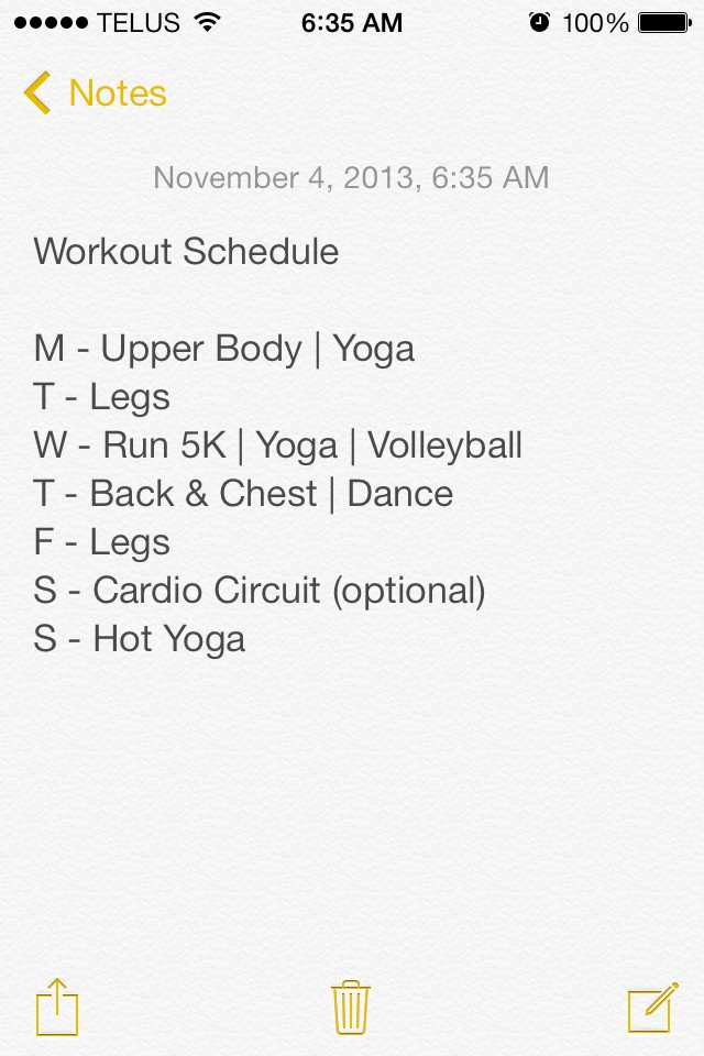 Example of weekly workout schedule